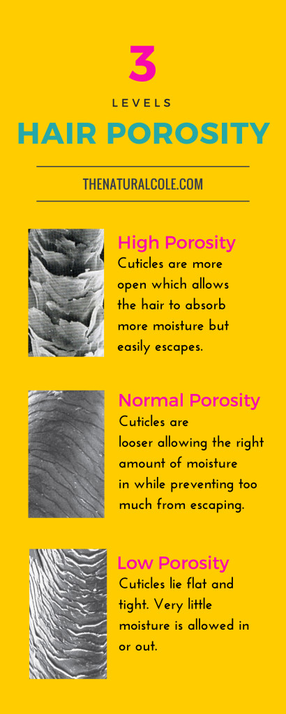 What is hair porosity the natural cole hair porosity levels urmus Choice Image