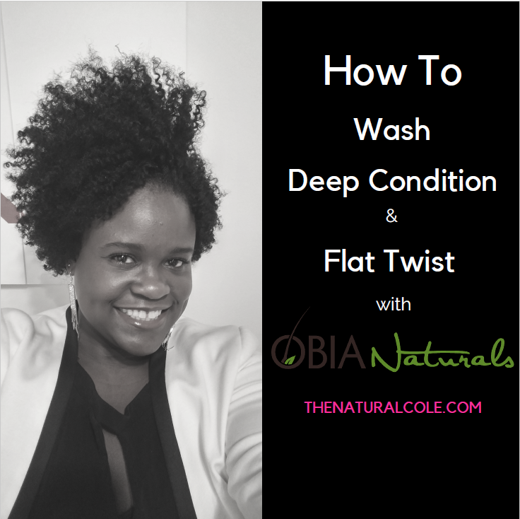How To Wash, Deep Condition and Flat Twist with Obia Naturals